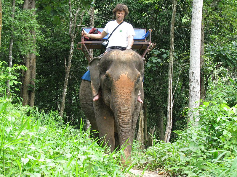 Foto elefant.jpg